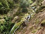 刑部谷7m滝を巻き道から見下ろす