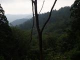 P911m付近から傘峠方面