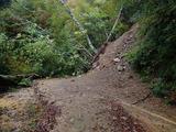 生杉の林道はブナ原生林の直前で崖崩れのため通行できない