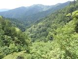 中ノツボ谷 岩場