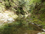 カヅラ谷出合上流の由良川