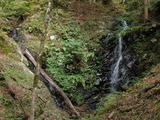 スケン滝 左側の細い滝を登る