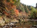 由良川 フタゴ谷上流