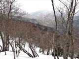 若狭側(永谷方面)は雪がほとんどない