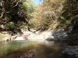 岩谷出合の上流