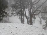 山上はまだ90cmの雪で覆われていた