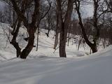 野田畑谷 後方の丘上のところが若丹国境稜線