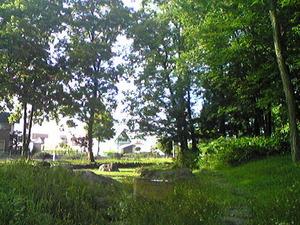 2356「丸山公園池」