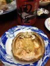 毛蟹の甲羅で蟹味噌酒