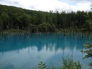 偶然の産物の青い池だが