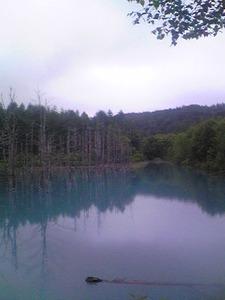 2179「青い池縦」