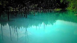 2516青の池