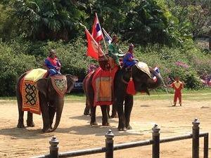 象に乗った戦闘風景