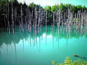 2513青い池