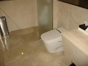 VIPトイレ
