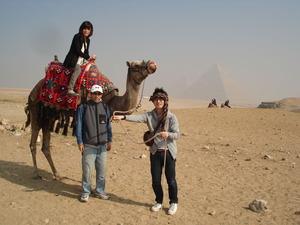 2281「ラクダとピラミッド」