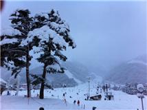 2067「長野白馬五竜スキー場」