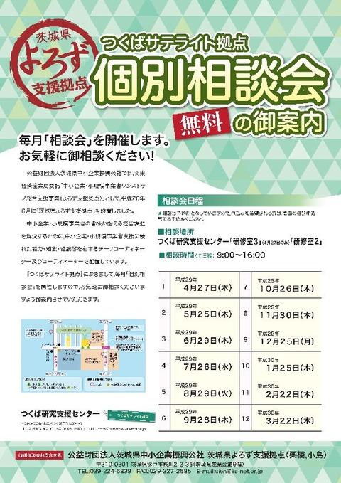 H29tsukuba_satellite