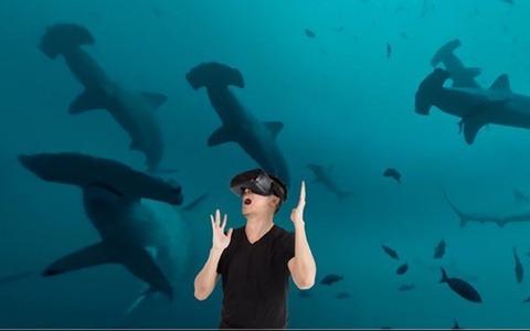 Shark-VR-1