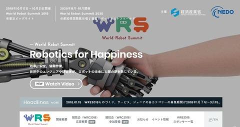 World Robot Summit