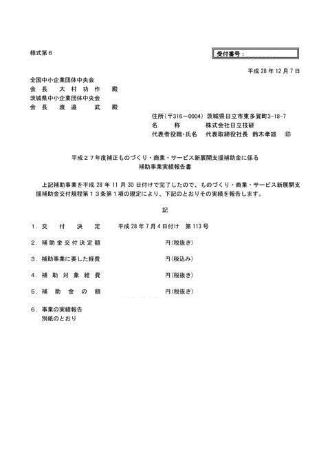 補助事業実績報告書