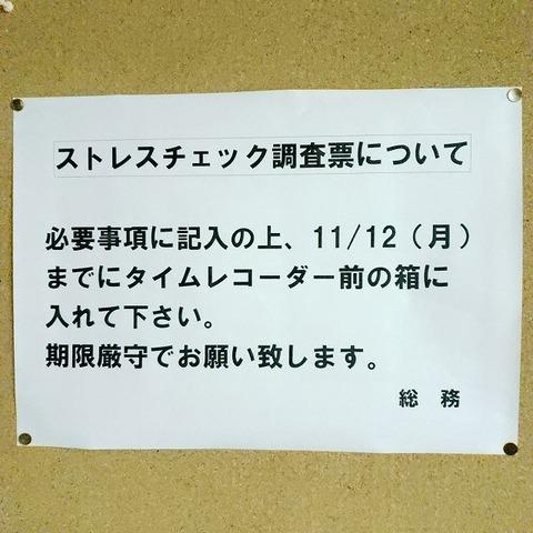 18-11-07-20-45-51-101_photo-s