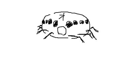 livejupiter-1428228455-6-490x200