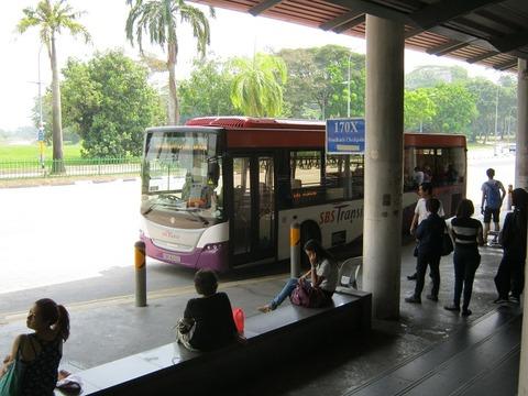 JB_imig_bus