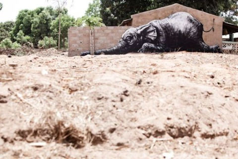 animal_inspired_african_street_art_640_01
