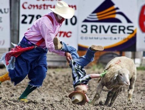 sheep_getting_revenge_on_obnoxious_children_640_01