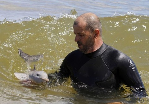 endless_cuteness_a_man_nursing_a_little_dolphin_640_07