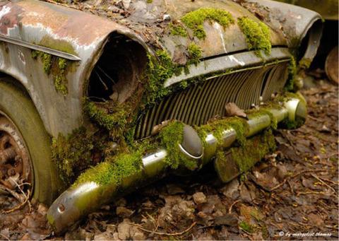 car_cemetery_in_switzerland_640_01