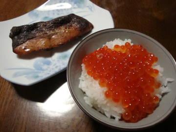 いくらご飯と鮭の味噌粕漬け