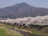 松ヶ崎から望む比叡山