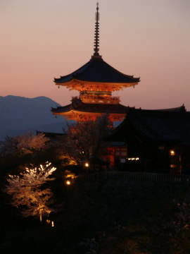 ライトアップの清水寺の塔