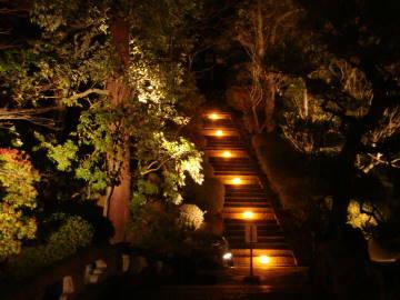 知恩院友禅苑のライトアップ