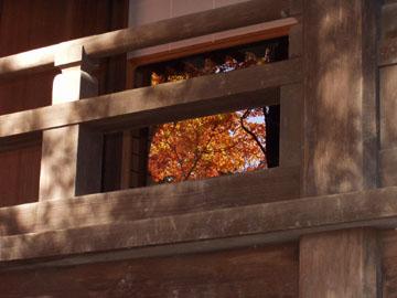 本堂に映る紅葉