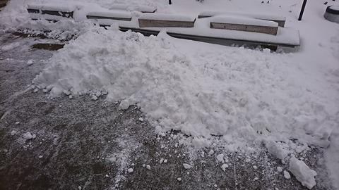 少しの雪も集めるとてんこ盛り