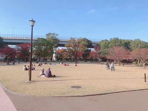隅田公園8