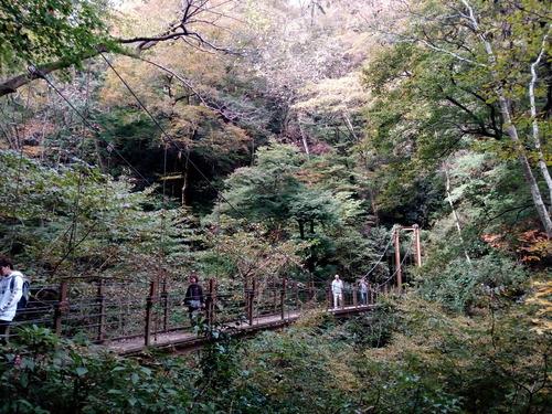 18-11-11-10-23-17-180_photo