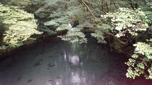 菊池渓谷3