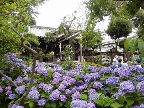 白山神社16