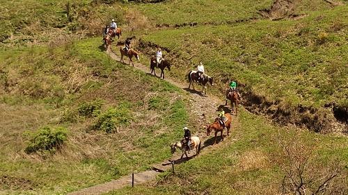 乗馬風景2