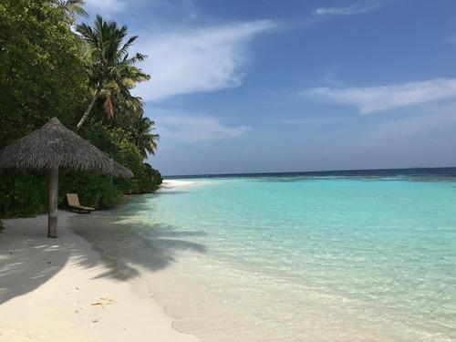 モルディブ海