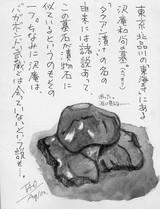 沢庵和尚の墓