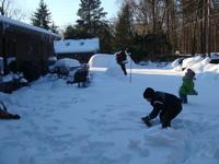 雪のBOWIE