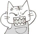 0701猫イカル