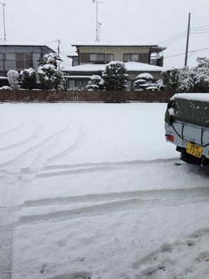 2014.02.08雪