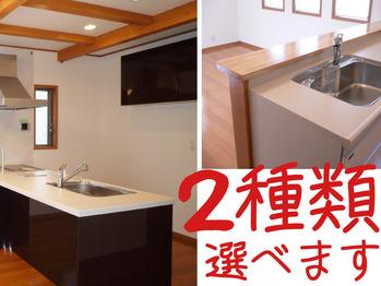 2種類のキッチン