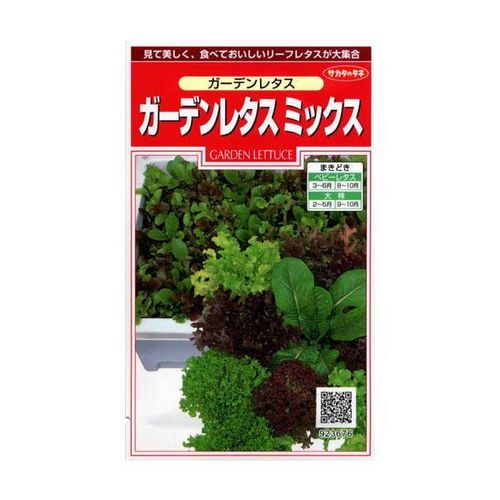 家庭菜園 プランター